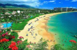 O Que Fazer Em Maui no Havaí