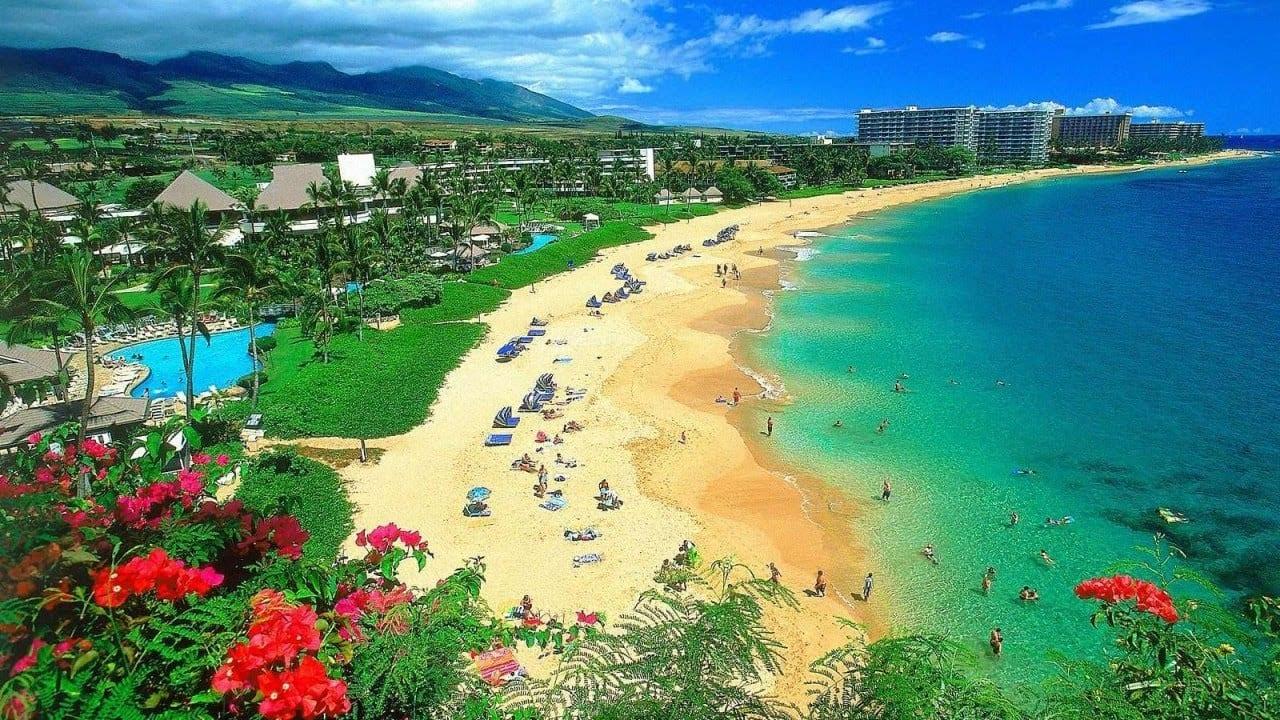 O Que Fazer Em Maui no Havaí - 2020 | Todas as dicas!