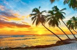 O Que Fazer em Barbados no Caribe